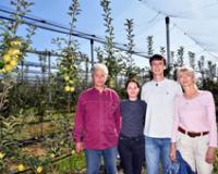 Zdrave jabuke i bez primene pesticida