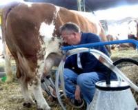 Nedimović: Sprečićemo zloupotrebe pri uvozu mleka
