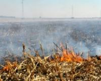 Spaljivanjem žetvenih ostataka narušava se kvalitet zemljišta