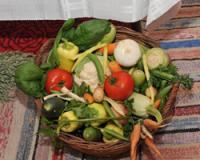 Savetovanje o savremenoj proizvodnji povrća