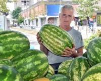 Uz znanje i ljubav lubenice budu slađe