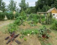 Produžen rok za slanje projekata na Organic konkurs