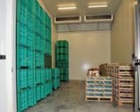 Otvaranje IPA fondova za srpsku poljoprivredu