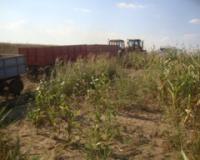 Skidanje  useva  sa  uzurpiranog  državnog  zemljišta