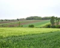 Na prodaju više od 109 hektara poljoprivrednog zemljišta u Dolovu