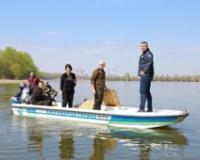 U Dunav kod Novog Sada postavljena gnezda za mrest smuđa