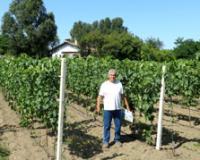 Bogata ponuda vina od autohtonih sorti