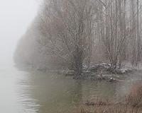 Na Tamišu uvedena redovna odbrana od poplava