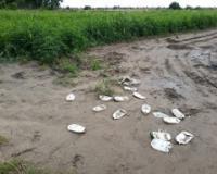Počelo prikupljanje pesticidnog ambalažnog otpada