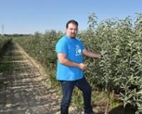 Sadnice jabuka za domaće i strane kupce