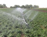 ZA FARME, PLASTENIKE I HLADNJAČE 32,5 MILIONA DINARA