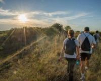 Tradicionalna šetnja Deliblatskom peščarom