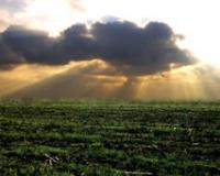 Poljoprivrednikov panel o aktuelnim agrarnim problemima