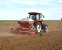 Odgovarajuća sorta, količina semena i pravo vreme preduslov uspešne proizvodnje