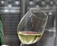 Osnovan Savez vinara i vinogradara Srbije
