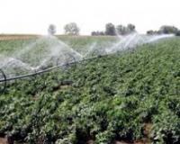 Novi kokursi Pokrajinskog sekretarijata za poljoprivredu, vodoprivredu i šumarstvo