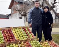 Uspeh je proizvesti zdravu jabuku