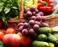 Podsticaji za organsku proizvodnju nisu smanjeni