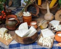 Autohtoni sirevi iz zadružnih mlekara