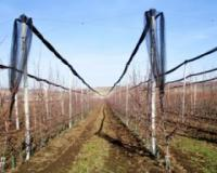 Veći agrarni budžet Opštine Inđija