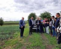 Novi Sad izdvaja 5,5 miliona za unapređenje organske proizvodnje na svojoj teritoriji