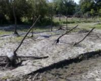 Prekomerne padavine u junu i olujni vetrovi i grad u avgustu oštetili useve