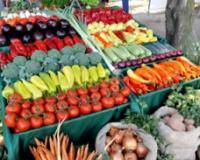 USKORO SAVEZ GRADOVA I OPŠTINA PROTIV GMO