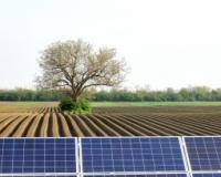 60.000 do 100.000 evra za klimatske i projekte zaštite biodiverziteta