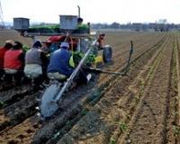 Odgovarajuće zemljište jedan od faktora uspeha