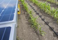 Bespovratna sredstva za projekte primene solarne energije u poljoprivrednim gazdinstvima