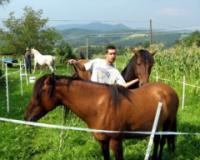 Nova sekcija u Poljoprivrednoj školi - đaci uče o konjarstvu