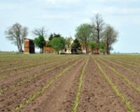 Istorijska perspektiva teorije i prakse agrara