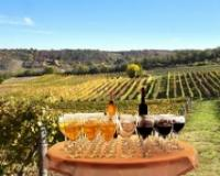 Vinsko blago Srbije